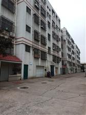 公路局家属院过户费低3室2厅1卫70万元