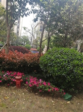 天府新区仁寿中央公园房屋出售