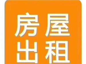�公花�@6�侵鞣�105平�чw���1000元/月