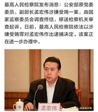 公安部原副部长孟宏伟被逮捕