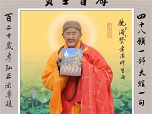 找学习佛陀教育的朋友
