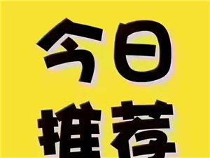 惠民小�^2��Ш��渭揖吣曜�9000