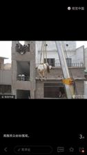 爆照:吊车从楼顶运牛……