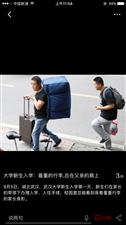 新生入学:最重的行李总在父亲肩头