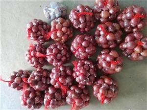 团果果只做最新鲜的水果