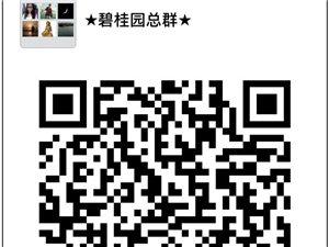碧桂园业主群,意见交流,物业咨询