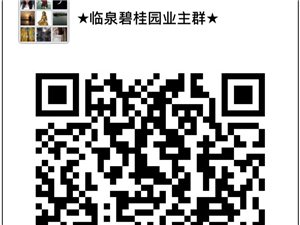 临泉碧桂园业主群