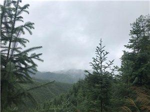 金盆山的美景