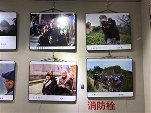 张家川在线选手摄影作品入选麦积书画摄影展