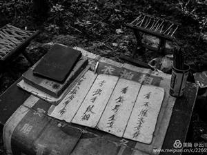 《千年伊尹祠庙会-看相》