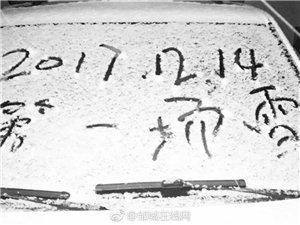 今冬邹城第一场雪??如约而至