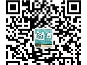 枣阳西南街社区卫生服务站,现需求护士一名