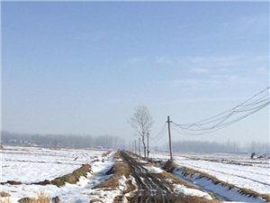 这就是我们安徽省霍邱县周集镇班台村胡台队