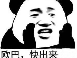 上海浦�|新�^回�h中城固