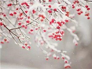 冬天已�^一半,春天����h�幔亢W诱f,