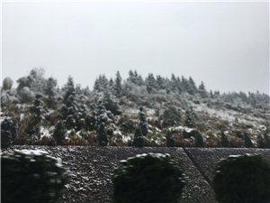 �M州也下雪了,好冷