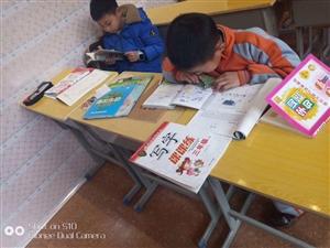 启迪教育是全凤冈最专业的课外辅导机构