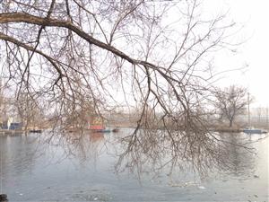 冰河初开,微暖的风带有一丝丝的水的味道,