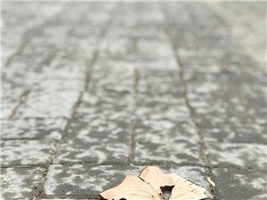 今日清晨雨夹雪