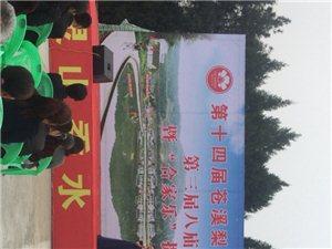 2018年中国苍溪第十四届梨花节八庙分会场
