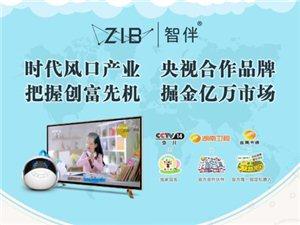 ZIB智伴智能机器人招代理商,愿意和合作的小伙伴可以和我联系哟!