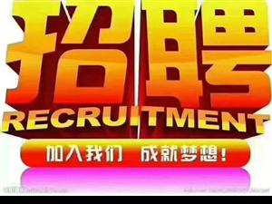 安徽茗峰农业科技发展有限公司招聘