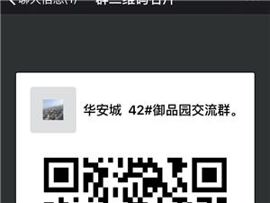 华安城42#地交流互动群
