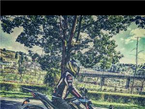 五月份摩旅骑行西安草莓音乐节求组队。
