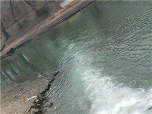 龙沙公园游艇码头这是往里注水呢?咋这么大味呢?啥水啊?