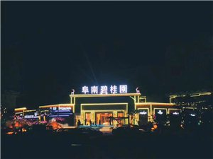 阜南碧桂园最豪华社区,您的不二之选。