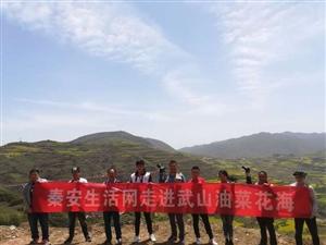 """天水五县两区自媒体聚焦""""大美武山油菜花海"""""""
