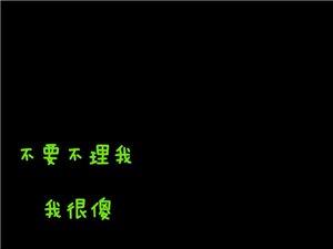 黄川的朋友介绍一下靠谱的手机维修店呗、