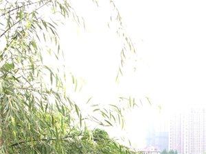 杭州有西湖,鄱阳有东湖!