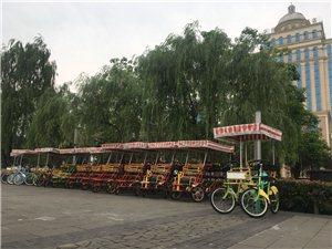 观光自行车