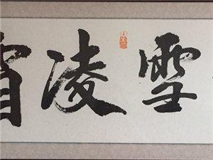 【诗画欣赏】芦花似雪的七绝专辑||孤身幽谷雅操高,馥郁清香厌世潮。