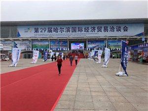 29届哈尔滨国际经济贸易洽谈会正在进行中