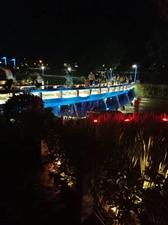 【随手拍】夜里的公园景色好看