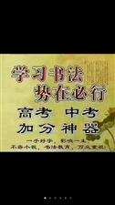 金申格专利练字