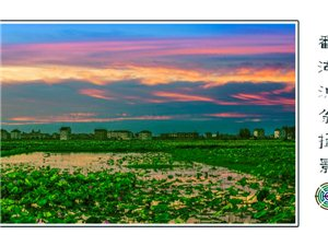鄱湖渔翁摄影作品欣赏