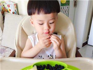小家伙儿拿在手里的第一颗蓝莓送给了麻麻