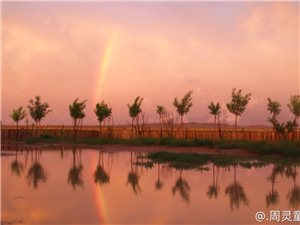 最美雨后――阿拉善