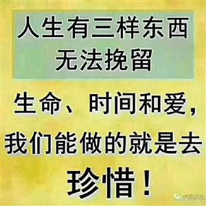 武则天证明.成功和男女没有关系;姜子牙证明.成功和年龄没关系;朱元璋证明.成功和出身没关系;