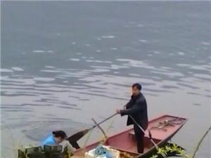 水上渔家湖面上小船迎着微风载着满仓鱼虾樱花桃花杨柳相伴夫妻划着