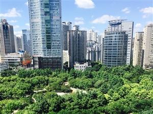 普陀长寿路华生大厦办公写字楼出租(264平米)