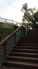 北湖公园山青水秀绿幽灵,空气清新人清爽!