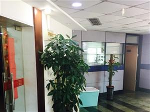 普陀区长寿路华生大厦办公写字楼出租(264平米)