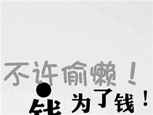 龙88必发游戏官网