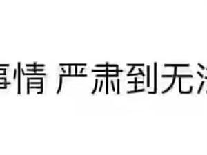 浦东高端商务KTV日结1000起