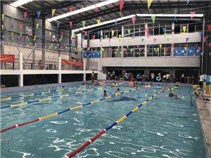 健身游泳免费体验