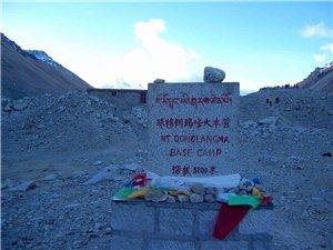 自�{西藏行招募中